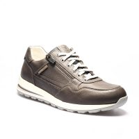Bradley Grey 1503 1545 1