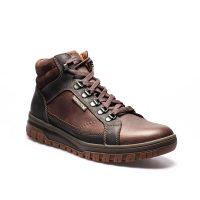 Pitt Dark Brown 1551 3651 1