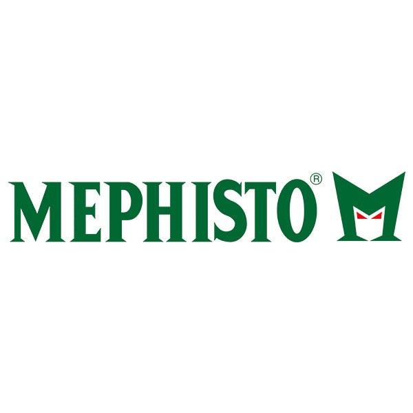 Logo frame rameau mephisto